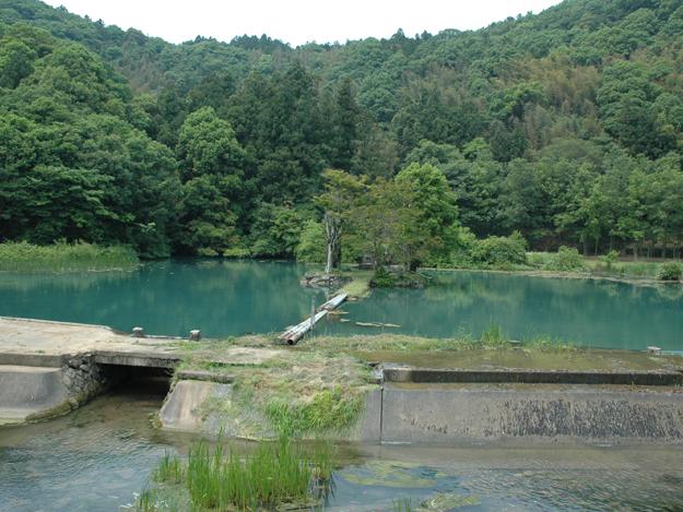 白水の池 ロケーション紹介-自然-|美祢市フィルムコミッション